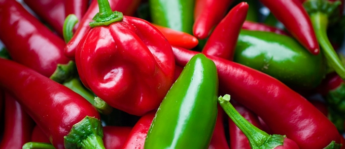 close up red and green chillies